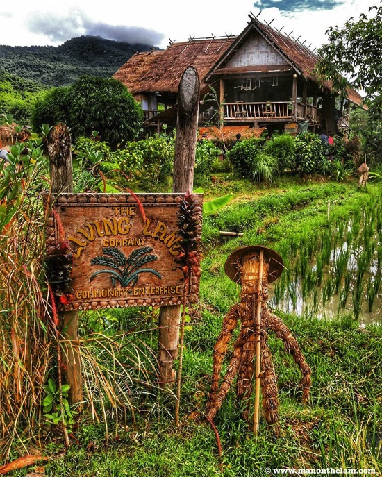 The Living Land Company Rice Field Farm Luang Prabang Laos scarecrow sign