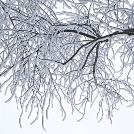 Manor Tree Service | Ice Storm | Tree Damage | Glen Arm, Harford County, Baltimore County, MD