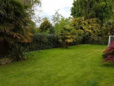 reducing in height leylandii and facing back