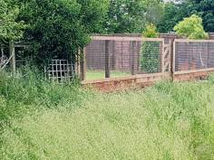 Removal of wire boundary fence & posts (dengie) before 5