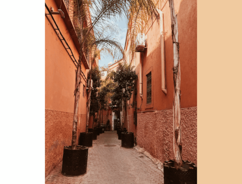 Marrakech City Guide Part III