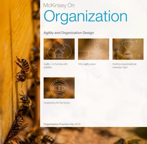 Agility and Organization Design – PDF Download