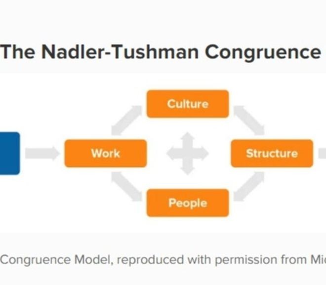 The Nadler-Tushman Congruence Model