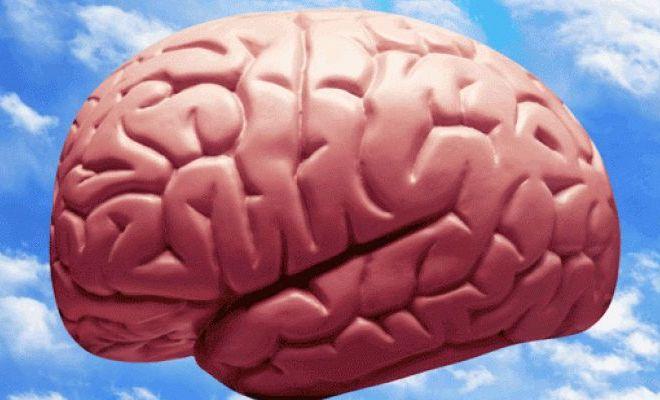 Better Organizational Change through Neuroscience