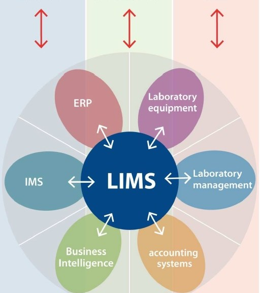 5 steps in the selection of a LIMS