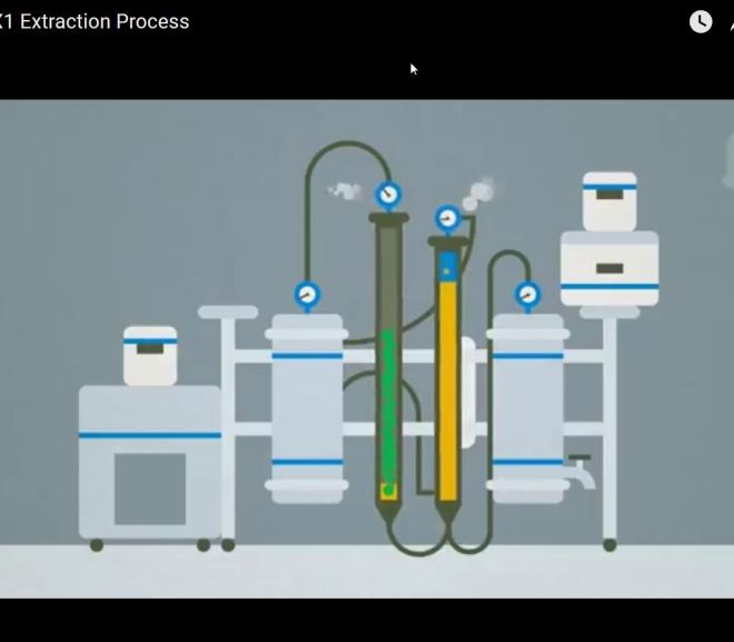 CANNABIS : The PX1 Extraction Process