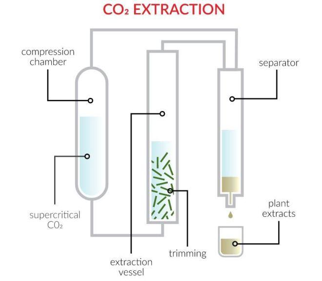 CBD CO2 EXTRACTION