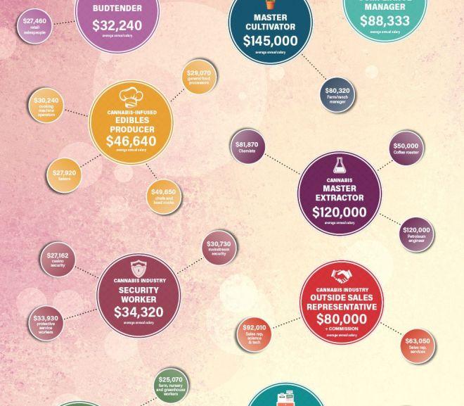 Cannabis salaries