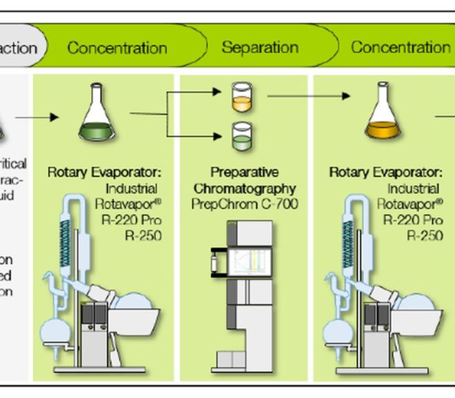 Industrial Evaporation & Chromatography: Ideal Combination for Cannabis Processing