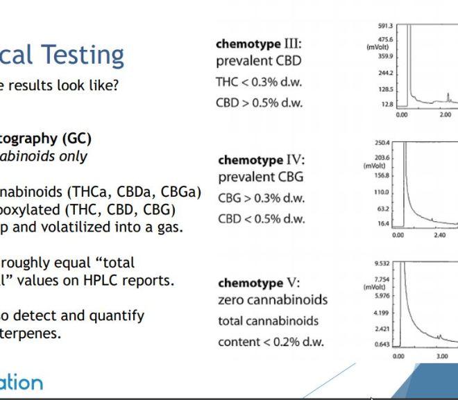 Hemp Processing and Analysis