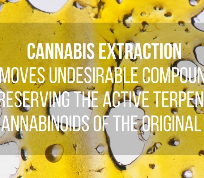 Cannabis Extractions, see all here