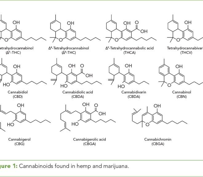 The Quantitative Determination of Phytocannabinoids in Hemp Oils Using HPLC with UV Detection