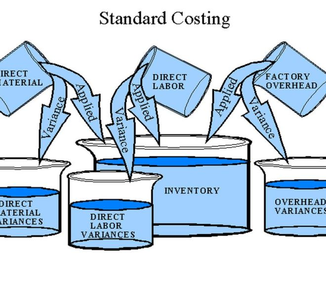 DEALING WITH STANDARD COSTING IN LEAN ORGANIZATIONS