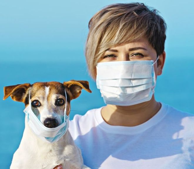 CORONAVIRUS: SHOULD WE BE WORRIED ABOUT OUR DOGS AND CATS?
