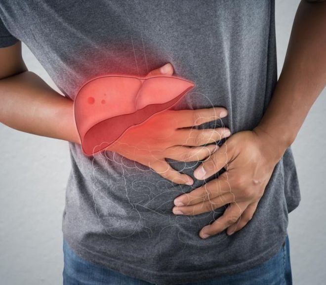 Cannabis Study Finds CBD Can Cause Liver Damage