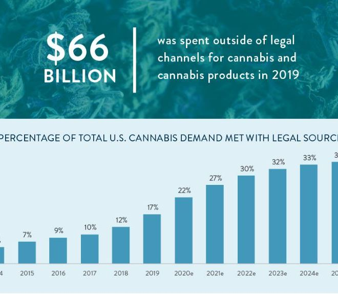 Legal Cannabis Industry Growth