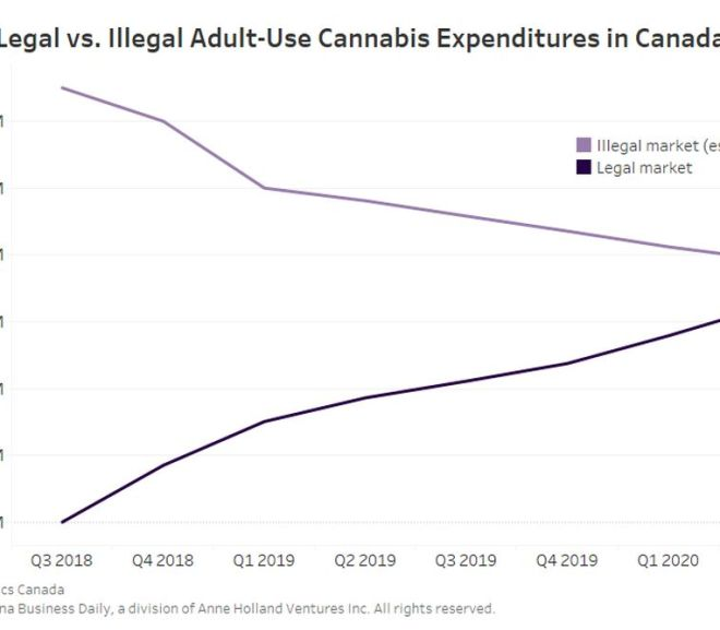 Illegal cannabis expenditures at multiyear low in Canada, data shows
