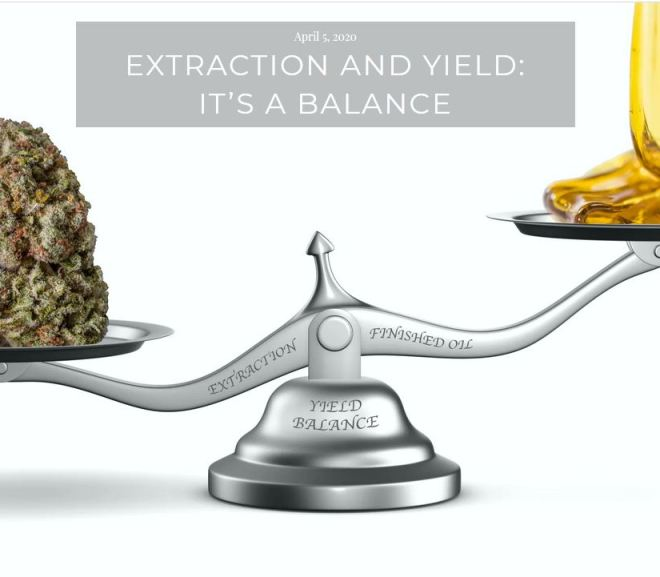 CANNABIS: EXTRACTION AND YIELD: IT'S A BALANCE