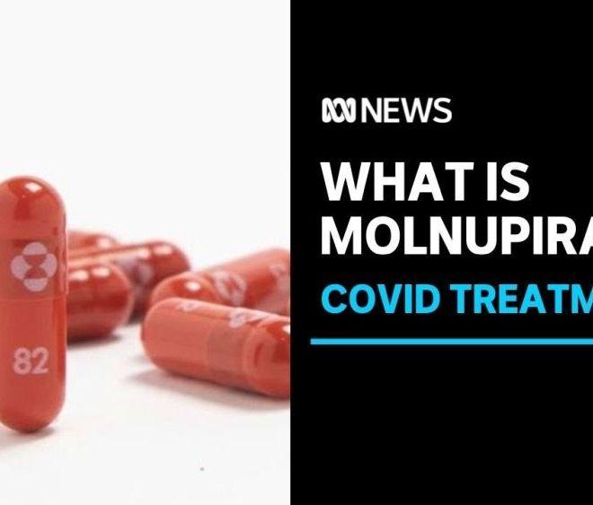 Molnupiravir: Merck's experimental Covid-19 drug cuts risk of hospitalization, death by half