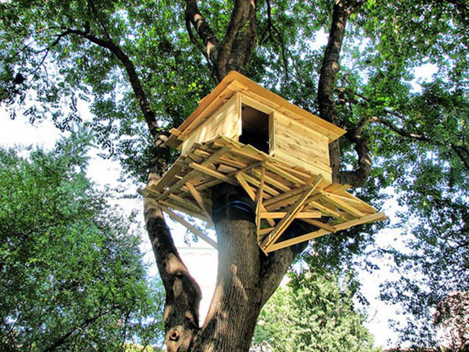 Costruiamo tutti insieme una casa sull 39 albero manoxmano - Casa sull albero minecraft ...