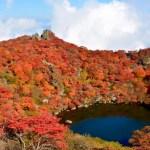 高崎山自然動物園紅葉の時期2017!見ごろやオススメスポット情報