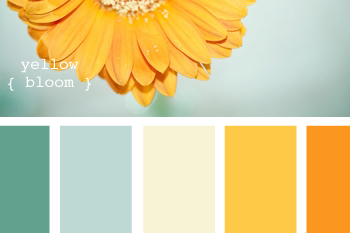 Barn Wedding Color Palettes | The Mansfield Barn | Vermont Barn Wedding Venue