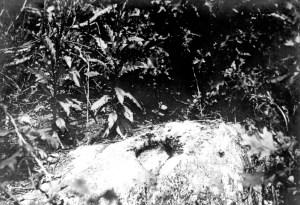 Puddin Lane, mortar site