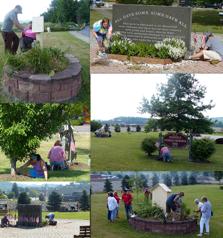 web Veterans Park Cleanup