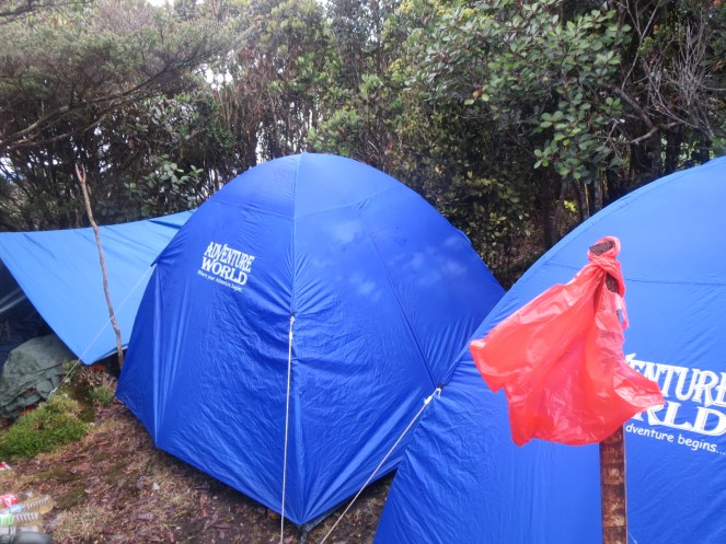 Home sweet Home: It looks more cramped than it really is, but only because we wanted to keep close. There's a whole big area behind these tents we didn't use too