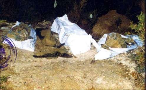 cuerpos sin vida de las niñas de alcácer, cadáveres niñas de alcàsser,