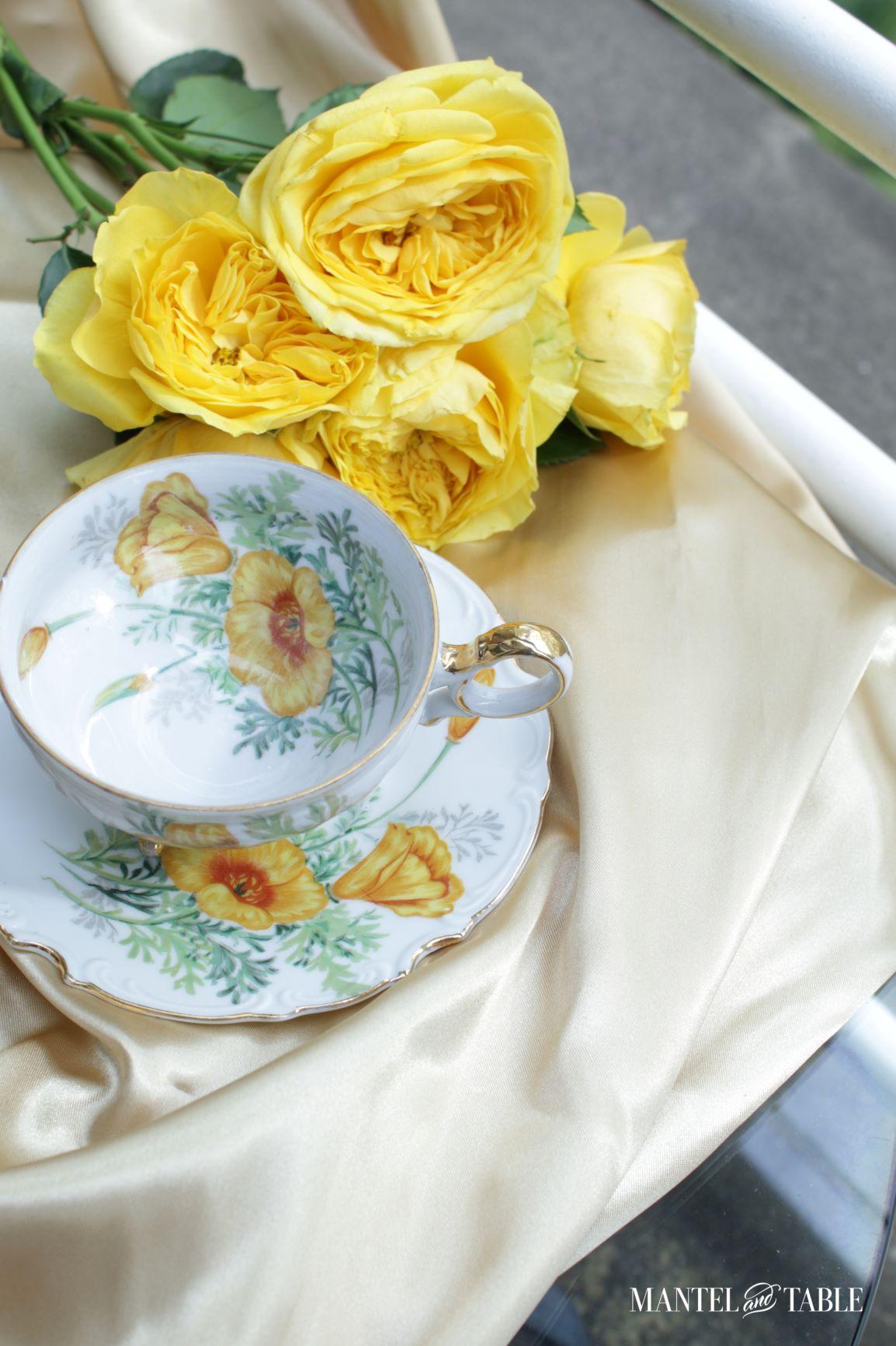 Teacup and saucer top view