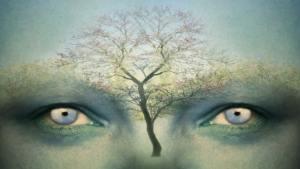 لماذا يحتاج البشر إلى الفلسفة؟