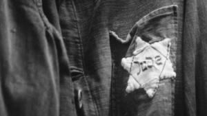 معاداة السامية؛ ألمانيا النازية