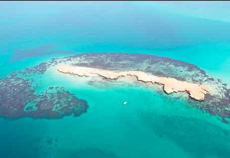 ما هي جزر فرسان