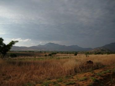 Central Madagascar 6