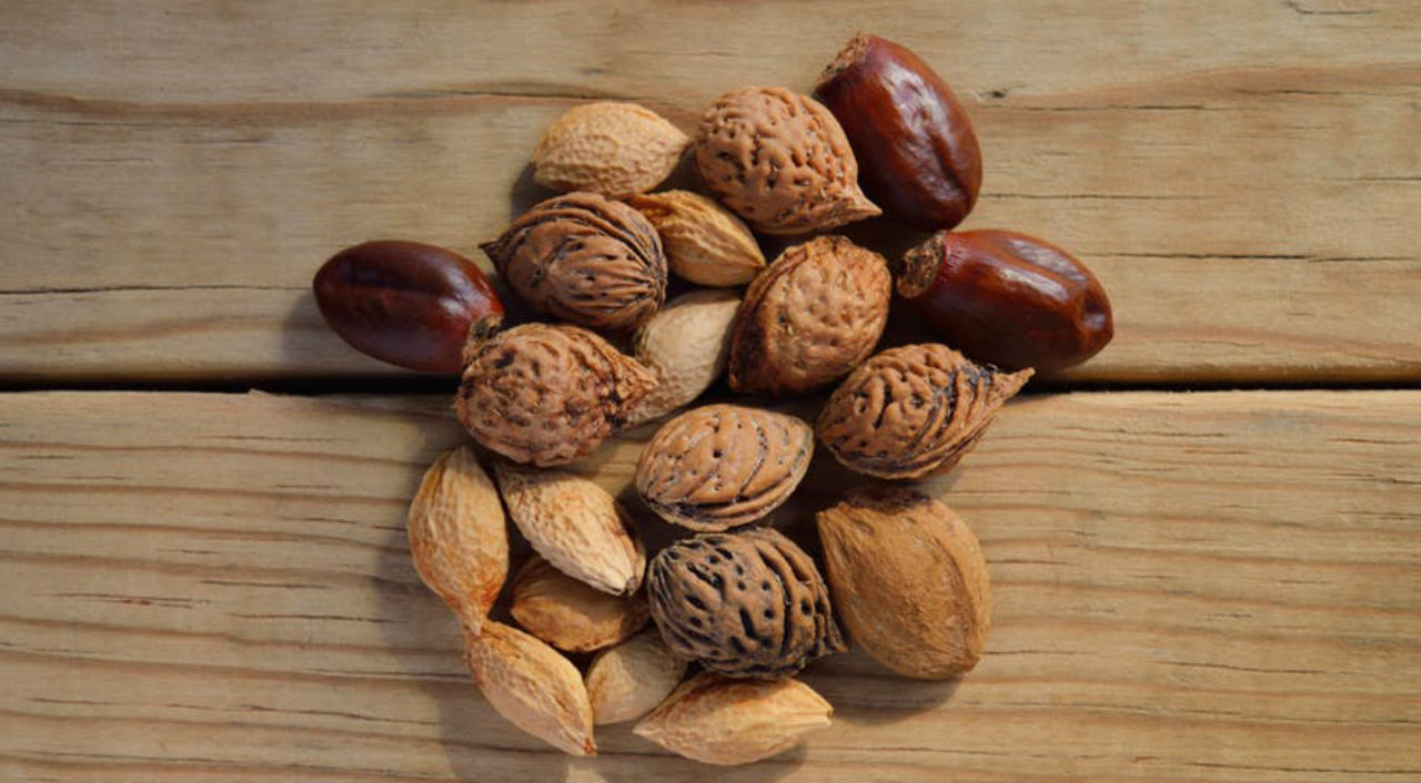 10 High Protein Snacks