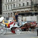 Carruagem no Central Park, New York, foto Barão