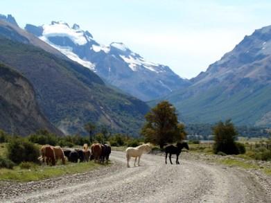 Argentina, El Chaltén