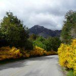Patagônia, estrada