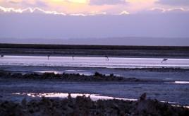 Salina ao por do Sol, Atacama