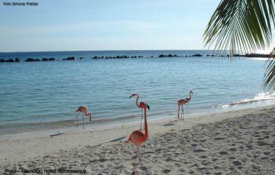 Aruba, resort