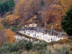 Cemitério na Serra da Estrela