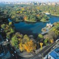 Central Park, Manhattan, NY