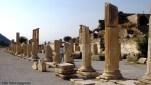 Colunas, Éfeso, Turquia