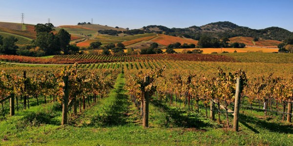 Napa Valley, California-ultraview-admin-ccby
