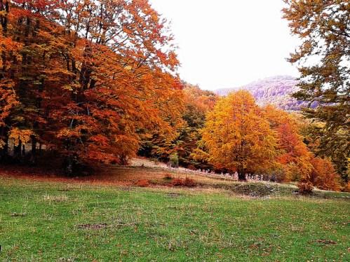 Parco Nazionale del Pollino Calabria, Italia