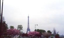 Tour Eiffel, Paris, vista do Trocadéro