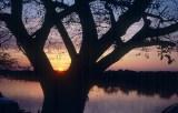 Pantanal no Estado de Mato Grosso