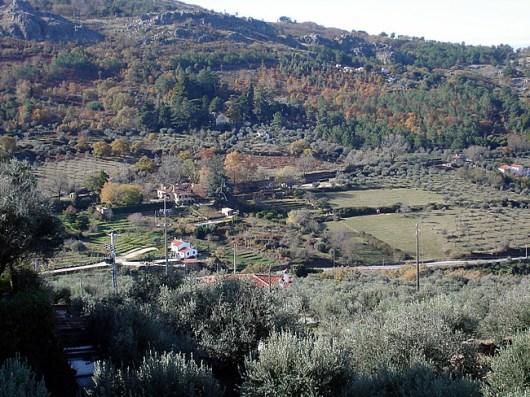 Alentejo, região produtora de ótimos vinhos