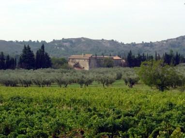 Baux, Provence, França, vinhedos